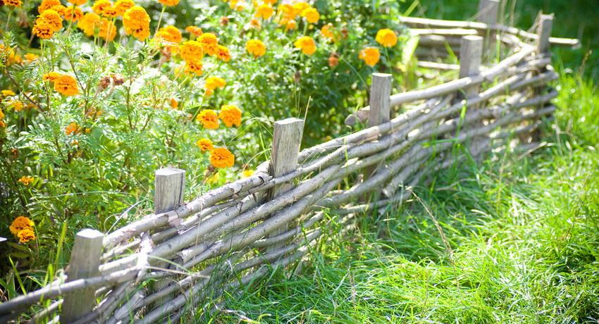 Декоративная изгородь используется для оформления цветников, клумб, палисадников и других участков сада