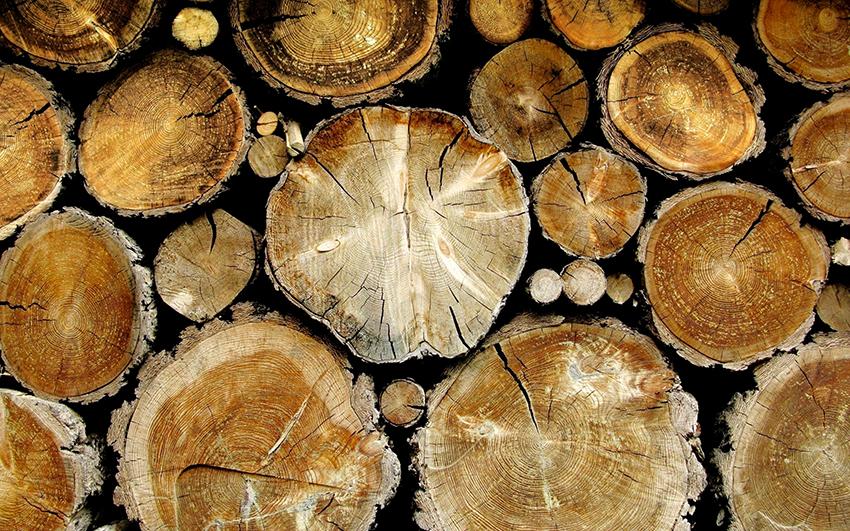 Мебель из дерева отличается прочностью, экологичностью и надежностью