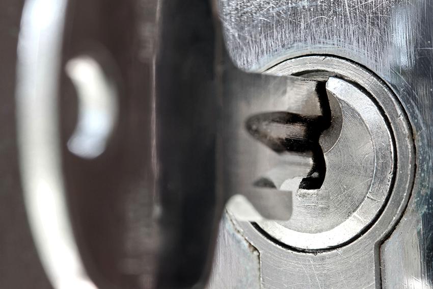 Личинки отличаются они разной степенью защиты и бывают только в цилиндровых замках