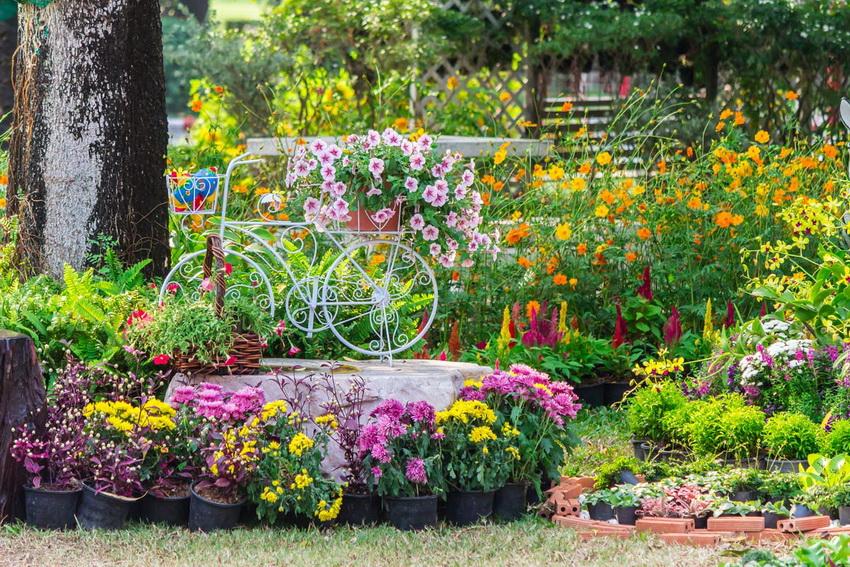 Красивый цветник - основа удачного дизайна любого дачного участка