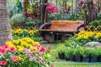 Красивым дачный участок не может быть без цветов, деревьев и растительности