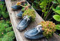 Старая обувь еще может послужить в качестве цветочных горшков и украсить участок
