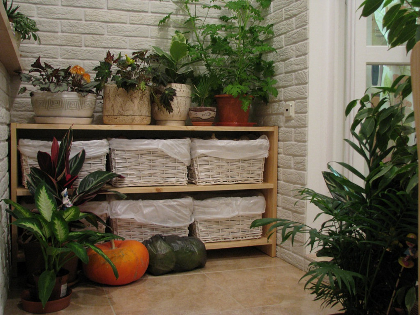 Закрытый стеллаж можно использовать для хранения обуви, инструментов, книг, продуктов, цветов