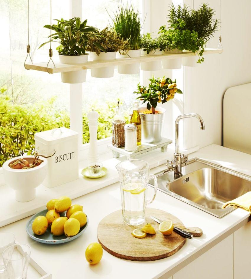 Подвесные вазоны с живыми цветами придадут интерьеру кухни оригинальной нотки