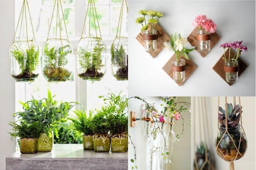 На окне в кухне следует размещать определенные виды растений