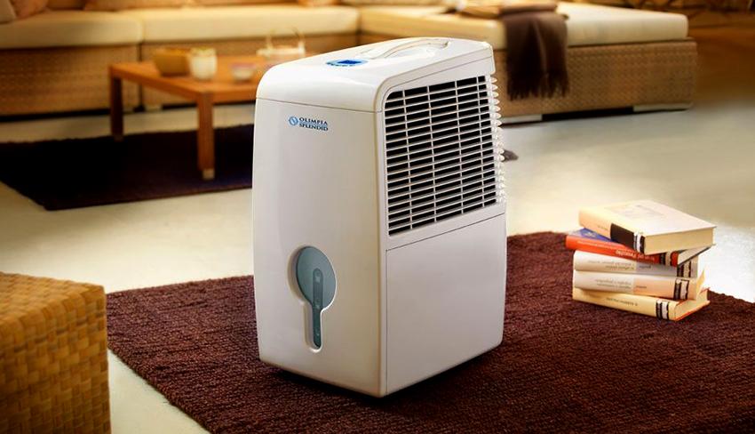 Осушитель воздуха позволяет избежать образование грибка и плесени в квартире