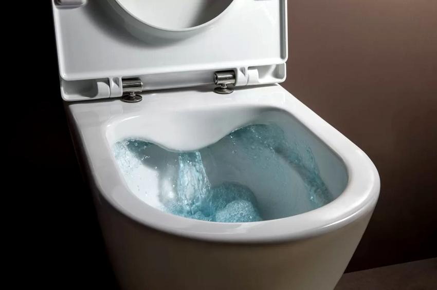 Лучше покупать сиденье изготовленное из предварительно обработанного антибактериальными средствами пластика