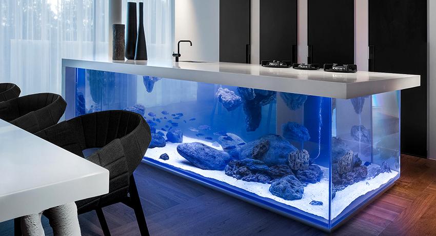 Герметик для аквариума – незаменимое средство для аквариумистов