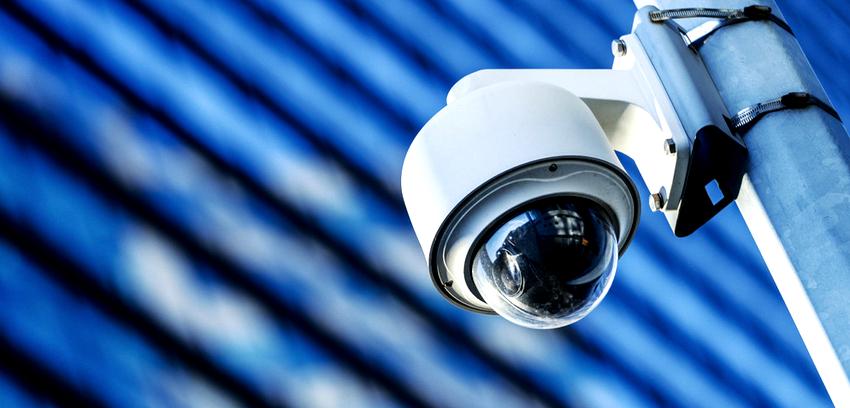 Купольная видеокамера является лучшим вариантом для организации наблюдения над большой территорией