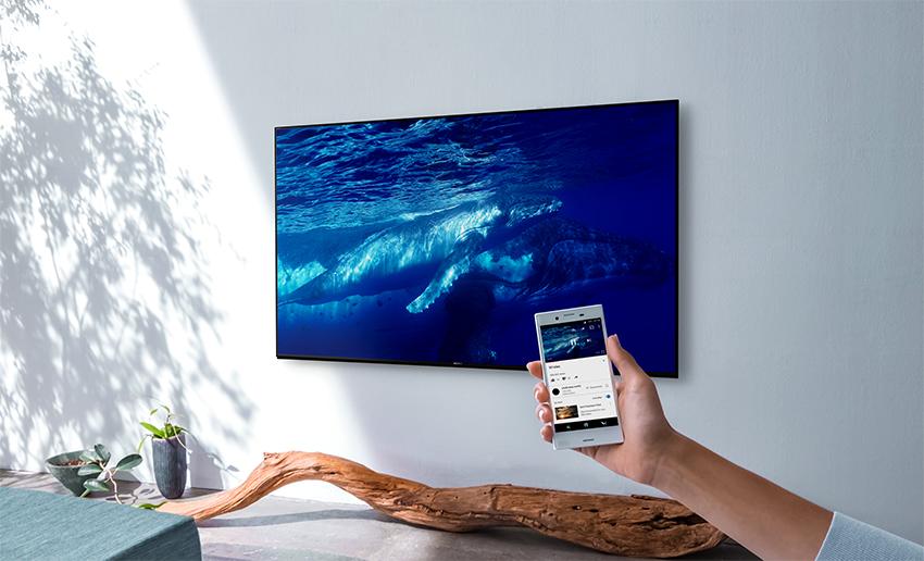 Все устройства, которые выпускает компания Sony, адаптированы под их телевизоры