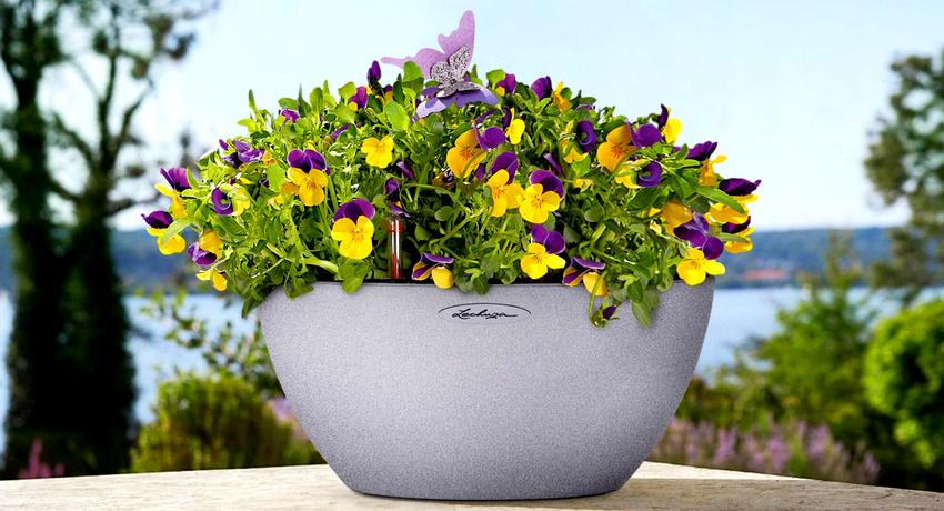 Горшки с цветами можно использовать не только в загородном доме, но и в условиях городской квартиры