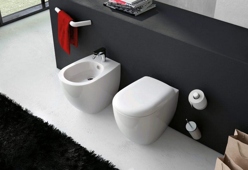Первые биде представляли собой ванночки, наполненные водой, которые использовались во Франции