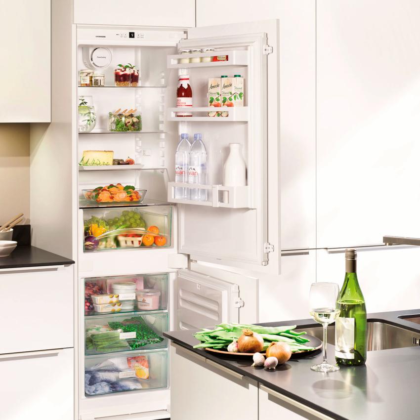 Среди встраиваемых холодильников Liebherr наиболее популярны стандартные модели двухкамерных изделий с нижним расположением морозилки