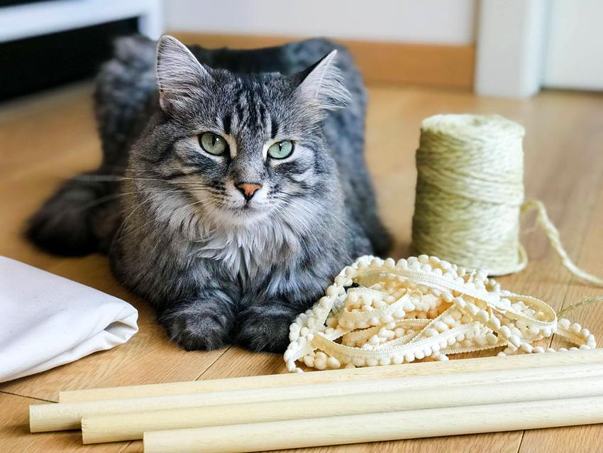 Для изготовления и украшения кошачьего дома могут использоваться самые разные вещи и материалы
