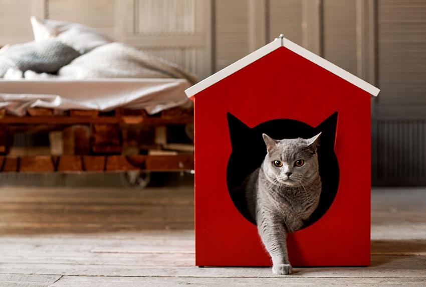 Кошачий домик необходимо делать максимально устойчивым