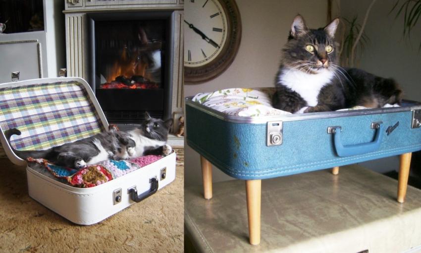 Лежанка из старого чемодана идеально впишется в интерьер квартиры в винтажном или лофт стиле