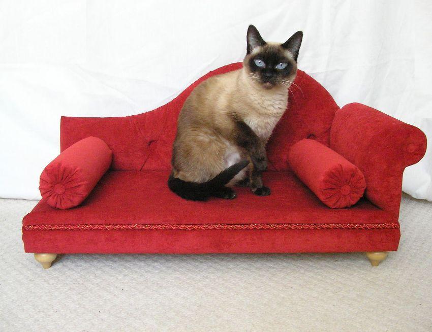 Лучше, чтобы диван для кошки имел мягкие бортики, тогда он сможет принять любимую позу для сна
