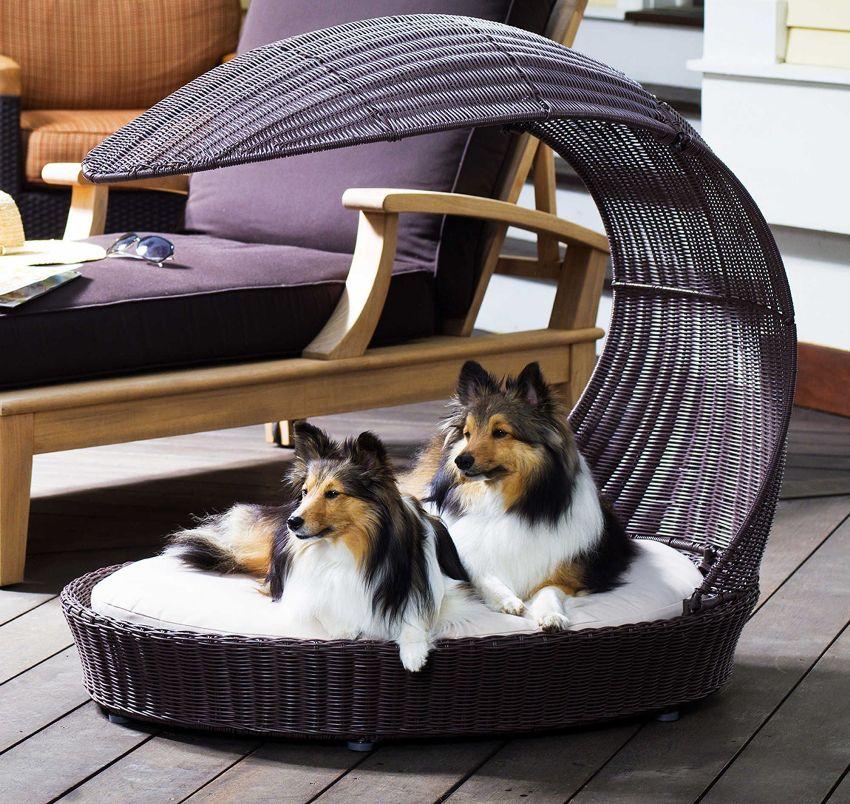 Кровать для собаки можно приобрести в зоомагазине или смастерить собственноручно