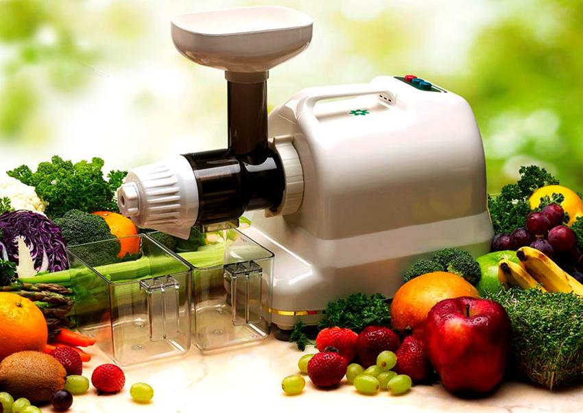Шнековые соковыжималки могут перерабатывать твердые и мягкие плоды, зелень, орехи, семечки