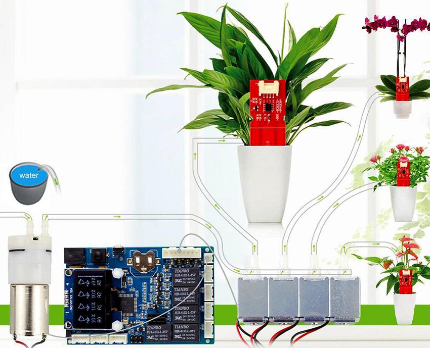 Возможно даже автоматизировать полив растений и кормление домашних питомцев