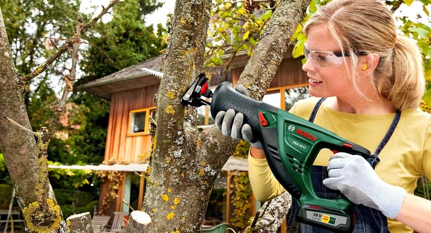 Сабельная аккумуляторная пила: инструмент для ухода за садом и обработки заготовок