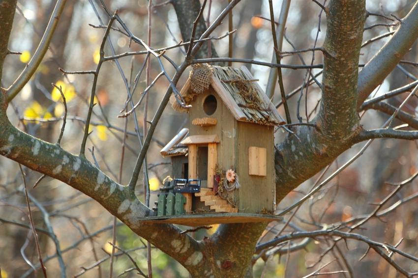Птичий домик с декоративным оформлением