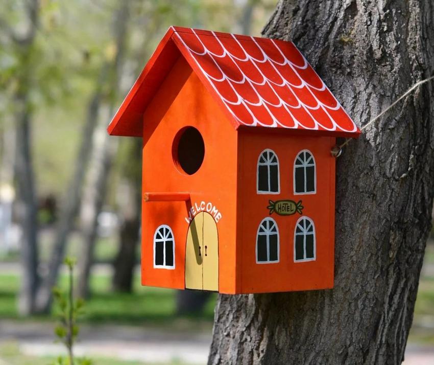 Птичий домик с ярким и забавным оформлением